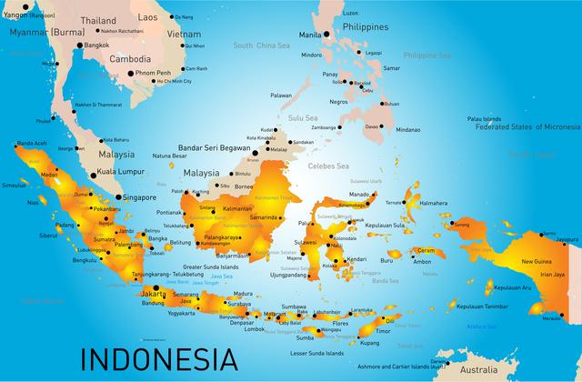 海外事業展開有望先国 1位はインドネシア